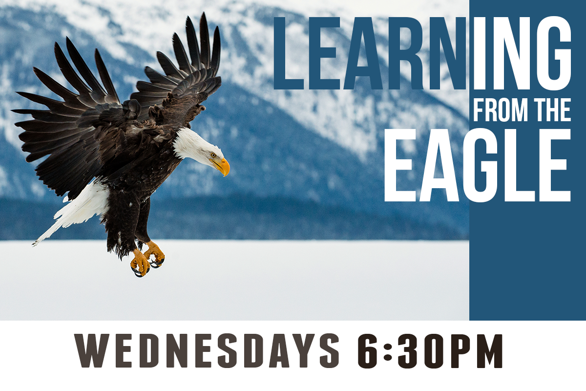 LearningFromTheEagle